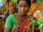 Toujours Inde arbres pour petite fille