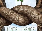 """Sortie d'un film documentaire """"L'intelligence arbres"""" septembre prochain"""