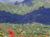 L'île cailloux fleuris Marquises