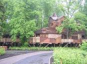 immense maison dans arbres