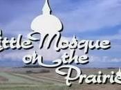 Petite Mosquée dans prairie juillet Canal+