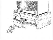 petit lapin suicidaire