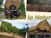 Costa Rica, exemple suivre