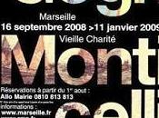 Exposition Gogh Monticelli Marseille