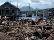 """""""Tsunami conséquences"""" 2nde partie août Canal+"""