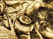 Histoire cocu, cocus dans l'histoire