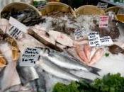 Salon l'agriculture vers pêche aquaculture durables