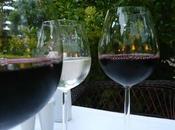 Côtes Bordeaux, naissance d'une nouvelle A.O.C