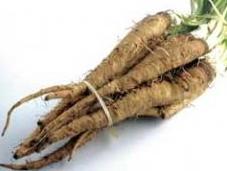 salsifis, légume méconnu, goût sucré