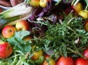 panier légumes fruits redécouvrir