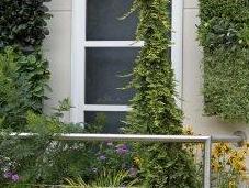 Vertigarden, nouvelle solution fleurissement vertical