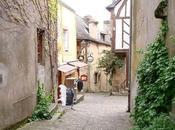 Rochefort Terre Bretagne (2/5)