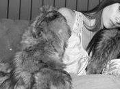 Stephanie Lapointe découverte quebecoise donne envie d'être accro