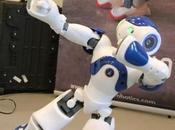 10/09/2009 Robotique Nao, nouveau robot dispense cours d'anglais