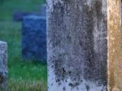 mort reçoit facture propre pierre tombale