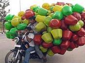 Optimiser transport pour réduire coûts émissions