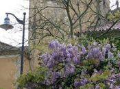 tour-porte Castelnau d'Anglès.
