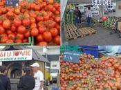 Fête tomate, j'adore