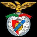 Amsterdam: L'Ajax affronte Benfica