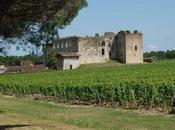 Visite Château Fargues