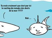 Alerte requins plage Canet-en-Roussillon, près Perpignan