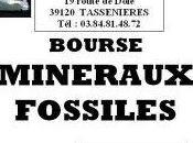 week-end Tassenières minéraux, fossiles météorites