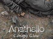 "Anathallo ""Canopy Glow"""