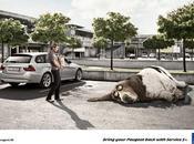 Peugeot pour réveiller bête sommeille