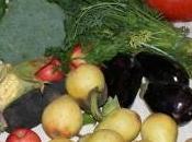 panier produits bio, saison, locaux