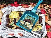 "Brownie ""Litière Chat"" spécial Halloween (vegan, sans oeuf, plv)"