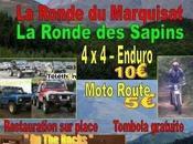 Rando motos ronde marquisat sapins (65) 5-12-09