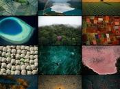 Yann Arthus-Bertrand ouvre galerie ligne