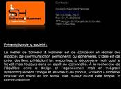 Schwind Hammer vision design communication.