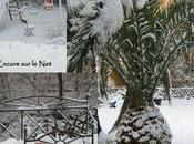 Nice Moyen Pays sous neige