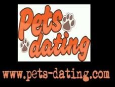 Pets-dating, l'ont fait