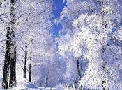 Hiver, hiver...