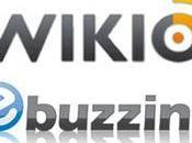 Fusion Ebuzzing/Wikio: Interview Bertrand Quesada (CEO Ebuzzing)