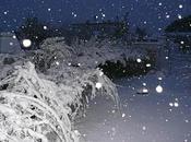 Roquemaure sous neige (chez moi)