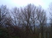 Saint-Vallier vendredi matin