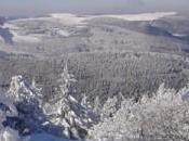 Balade hivernale dans Ballon Vosges