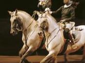L'Académie spectacle équestre Versailles lieu spectacles formation