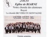 Concert gratuit Biarne
