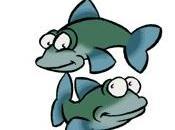 Coquilles poisson