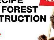 Pause KitKat Nestlé pousse déforestation