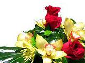 Boutique Interflora Côté fleurs Digne Bains