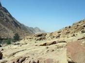 egypte desert sinai monastere sainte catherine