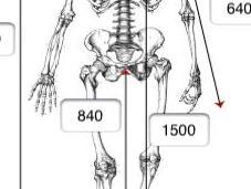 géométrie votre vélo l'étude posturale avec Iphone