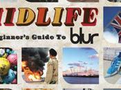 disque pochette Midlife, kaleidoscope années Blair Blur.