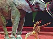 Statut l'animal Bolivie montre l'exemple