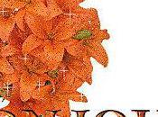 Pain d'avoine concour l'orange.